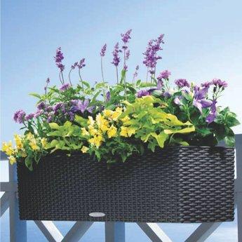Lechuza Balconera Cottage Flowerpot - Includes Lechuza Irrigation