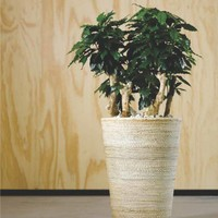 Flower Pots in All Types and Sizes!