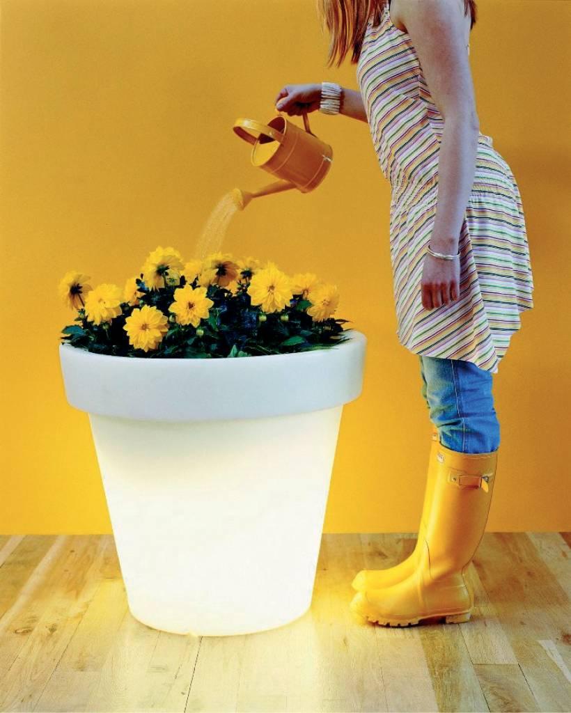 bloempot van bloom met verlichting originele bloempot in verschillende maten en kleuren