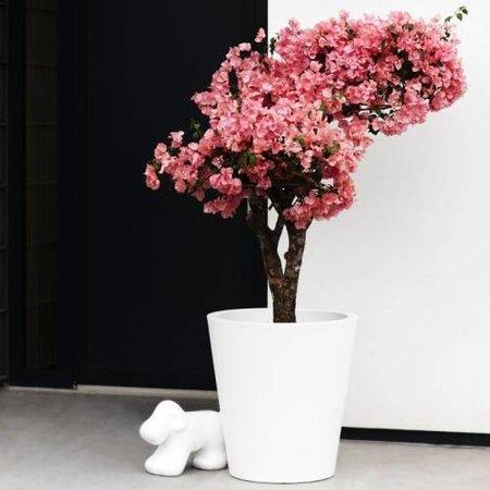 Elho Pure Straight Round - Een stijlvolle en moderne bloempot met leuke kortingen!