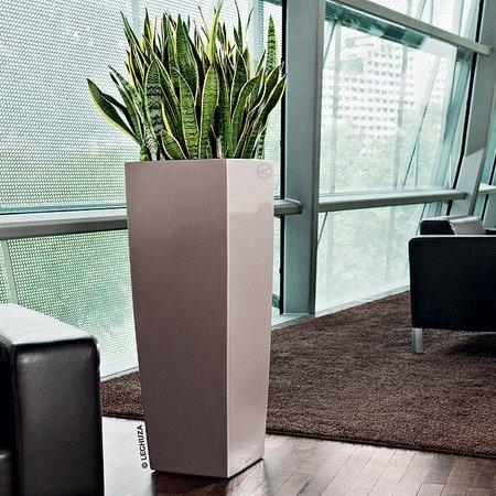 Lechuza Cubico Alto 40 Flowerpot - Simplicité et style dans plusieurs couleurs.