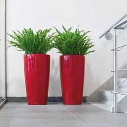 Lechuza Rondo Flowerpot