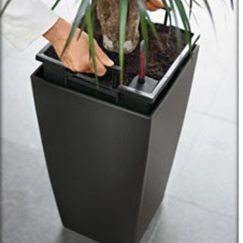 Lechuza Cubico Flowerpot - Simplicité et style dans plusieurs couleurs et tailles