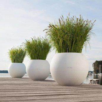 Lechuza Puro Flowerpot - Includes Lechuza Irrigation