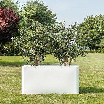 Otium Design Qaudris 40 Long. Pot de fleurs de différentes couleurs pour l'intérieur et l'extérieur.