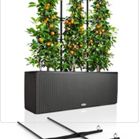 Lechuza grille de montée Trio - permettent de plantes grimpantes et de fleurs escalade belle!