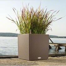 Cube Cottage Flowerpot