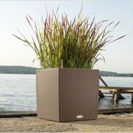 Lechuza Cube Cottage Bloempot - Inclusief Lechuza Bewateringssysteem