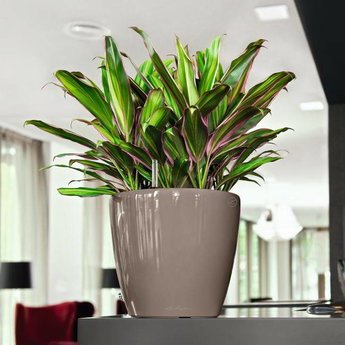 Lechuza Classico LS Flowerpot - Timeless with a classic look