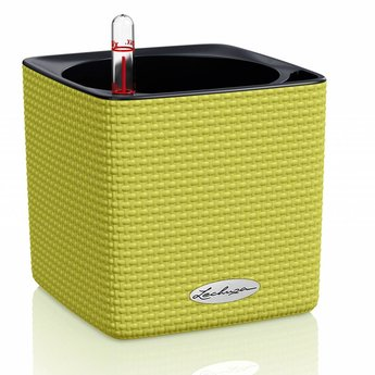 Lechuza Color Cube Herb - Includes Lechuza Irrigation