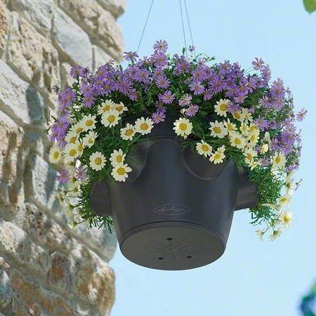 Lechuza Cascadino Color Bloempot - Inclusief Lechuza Bewateringssysteem
