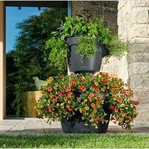 Cascadino couleur Flowerpot