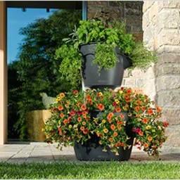 Lechuza Cascadino Color Flowerpot
