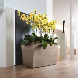 Lechuza Cararo Flowerpot
