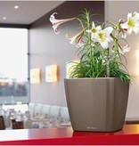 Lechuza Quadro LS Flowerpot - Intemporel et élégant, en plusieurs tailles et couleurs