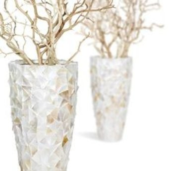 Fleurs Ami Coast - An exclusive showpiece in any room!