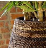 Fleurs Ami Magellan Natural Weave Een exclusief pronkstuk in iedere ruimte!