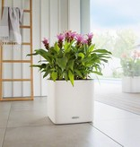 Lechuza Cube LS 35 color bloempot. Inclusief Lechuza Bewateringssysteem