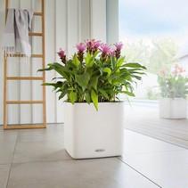 Cube LS 35 color bloempot