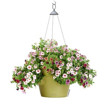 Lechuza Cascadino Color Flowerpot - Includes Lechuza Irrigation
