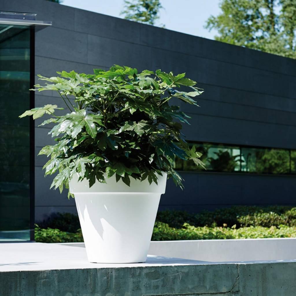 Elho Pure Round - Donnez votre jardin, terrasse ou à la maison un beau regard!