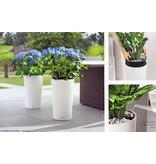 Lechuza Cilindro Flowerpot - Parfait pour le jardin, la terrasse et l'intérieur. En plusieurs couleurs!
