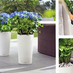 Lechuza Cilindro Flowerpot