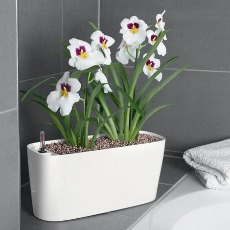 Lechuza Delta 10/20 Bloempot - Prachtig design, inclusief Lechuza Bewateringssysteem