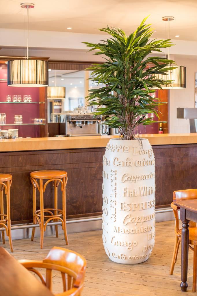 Fleurs Ami Fleur Ami coffee! L'eyecatcher dans les restaurants, les cafés, ....