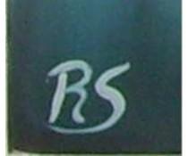 R.S. unieke olieverfschilderijen