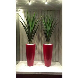 Belize 80cm Fuchsia Roze, Hoogglans Fuchsia Roe vaas. Vazen in Shiny Pink