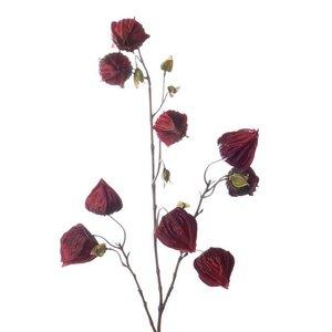 Lampionnetjes Tak 100cm Warm Rood. Ontdek onze nieuwe collectie Kunstplanten. Lage prijzen, snelle levering.