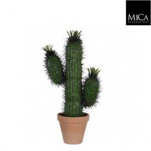 Cactus Saguaro 50cm Groen