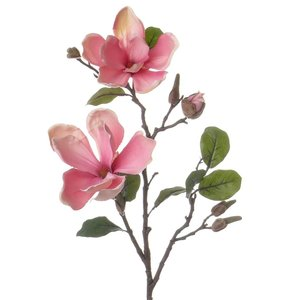 Magnolia Tak 72cm Roze