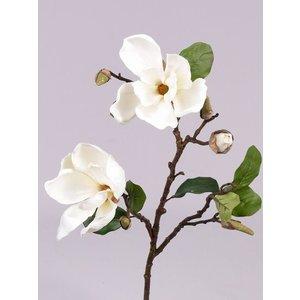 Magnolia Tak 72cm Creme Wit