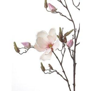 Magnolia Tak 107cm Wit Roze