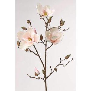 Magnolia Tak 87cm Wit Roze