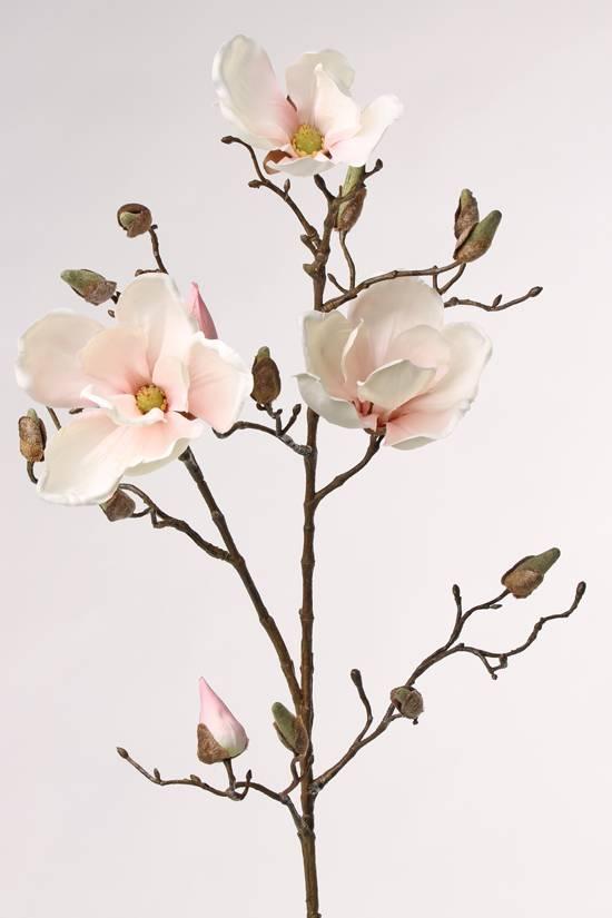 Magnolia Tak 87cm Wit Roze - Bloempotshop.nl