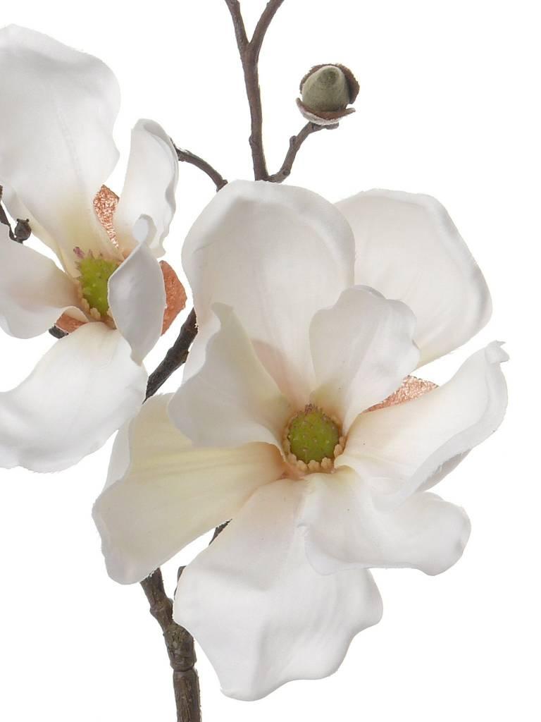 Magnolia Tak 48cm Creme Wit - Bloempotshop.nl