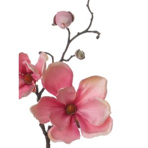 Magnolia Tak 48cm Roze
