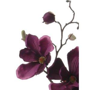 Magnolia Tak 48cm Warm Paars