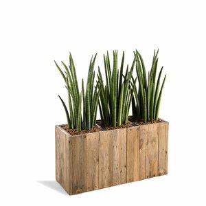 Houten plantenbak long maat M