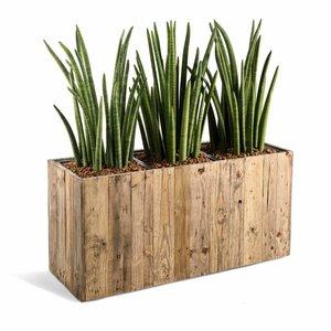 Houten plantenbak long maat L