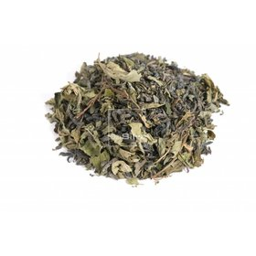 DaSilva China Moroccan Mint