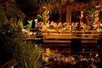 Prachtige kerstmiddag Orchideeën Hoeve