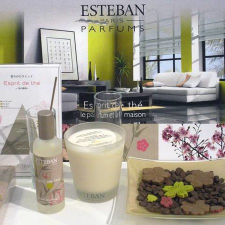 ESTEBAN DESIGN ESPRIT DE THE REFILL
