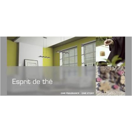 ESTEBAN DESIGN ESPRIT DE THE REFRESHER OIL