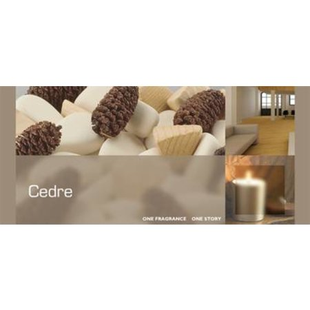 ESTEBAN DESIGN CEDRE REFRESHER OIL