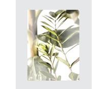 Homemade poster drømmende botanisk