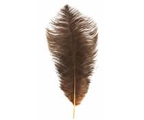 Madam Stoltz foråret brun large